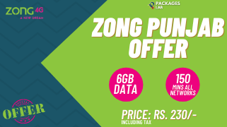 Zong Punjab Offer