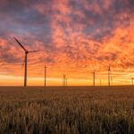 Easy Green Energy Tips For The Average Person